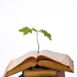 books and tree sapling
