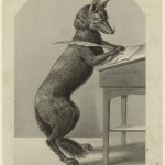 images_nypl_org fox writing